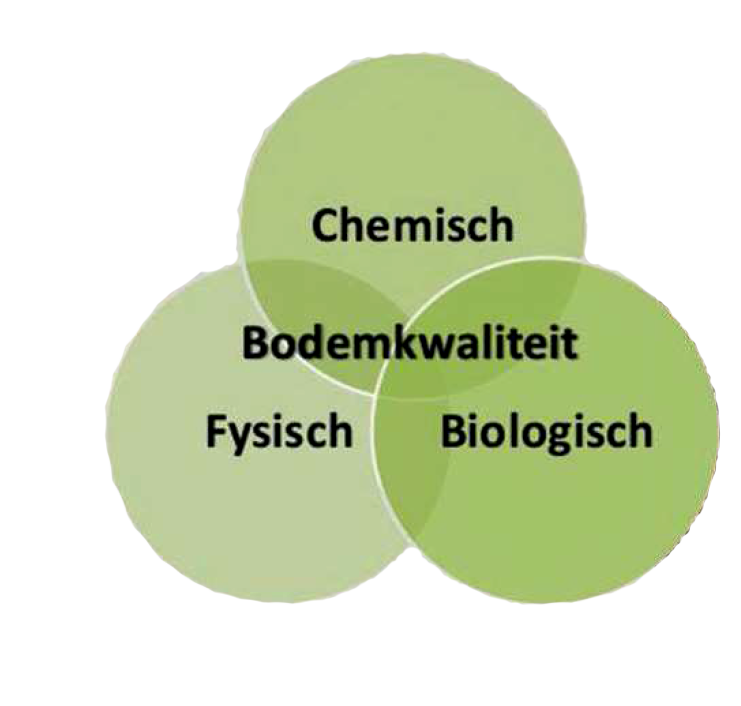 chemische tuin theorie